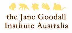 Ace supports Jane Goodall Institue