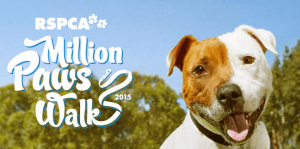 Million Paws Walk supporter